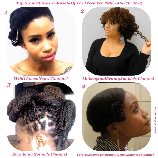 top natural hair tutorials of the week 2.28 - 3.7.2013