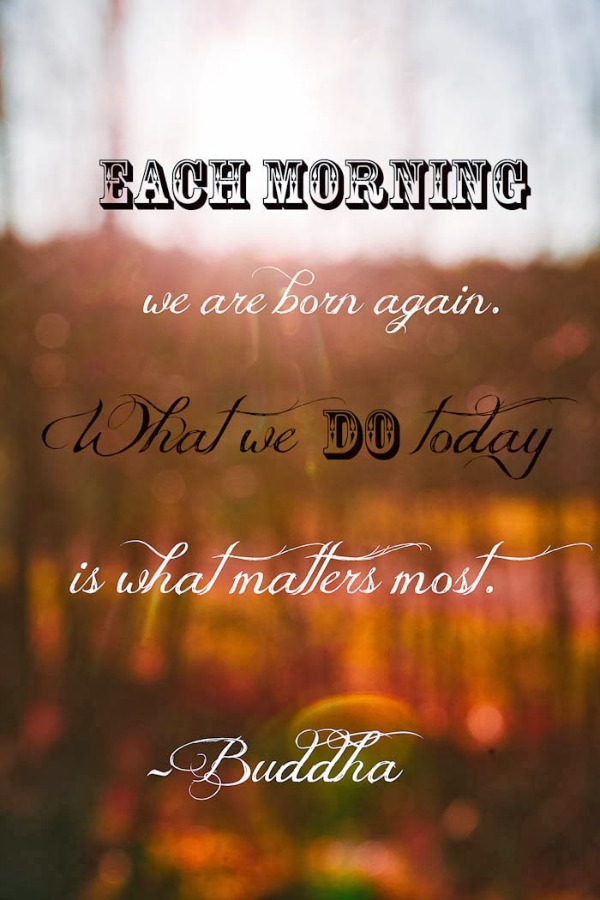 every-morning-buddha